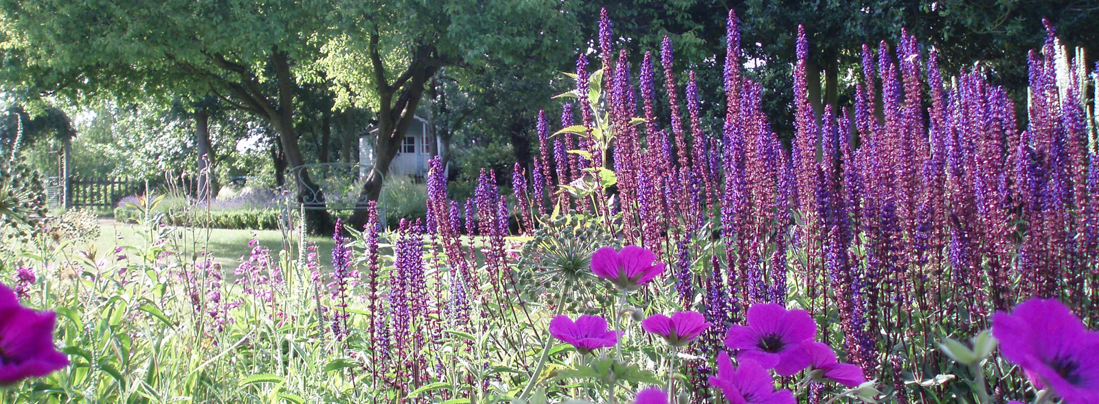 Garden Design Surrey | Joanne Winn Garden Landscaping